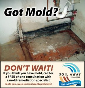 Mold Removal NH