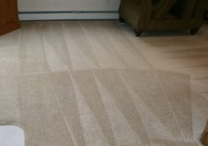 10% Coupon for Carpet Cleaning NH