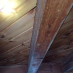 Mold and Mildew Specialists Windham NH 03087