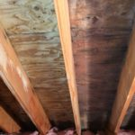 removing attic mold NH