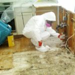 Getting Rid of Mold - Londonderry, NH 03053