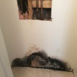 Mold Remediation Estimate – Windham, NH 03087