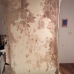 Mold in Basement - Derry, NH 03038