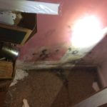 Buying a House with Mold – Salem, NH 03079