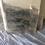 mold restoration in commercial building