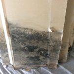 Professional Mold Remediation - Auburn, NH