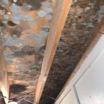 attic mold removal derry nh