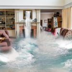 Flood Damage Repair Contractor