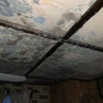 Mold Remediation Company - Sanford, Maine