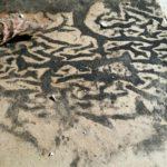 Mold Cleanup Company - South Berwick, ME